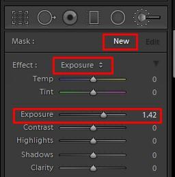 Lightroom Exposure Correction Tool