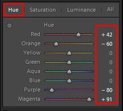 Lightroom Hue Correction Tool