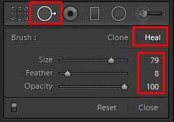 Photoshop Lightroom Spot Removal Tool