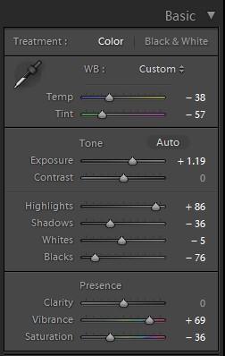 lightroom basic color custom panel