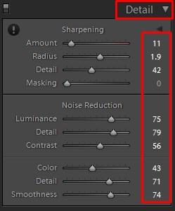lightroom detail tool panel