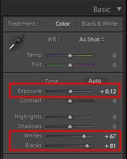 lightroom exposure for basic color palette