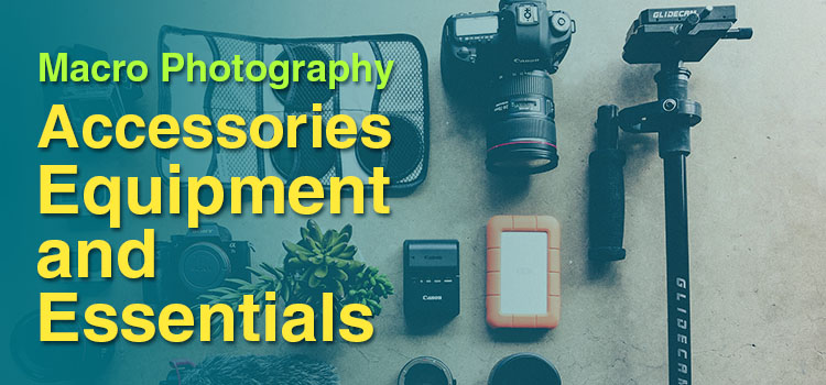 Macro Photography Accessories, Equipment, and Essentials