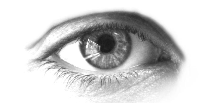 Eyelash Photoshop Brushes