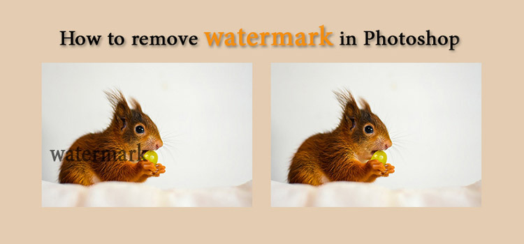 How to Remove Watermark in Photoshop