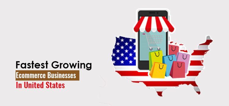 fastest growing ecommerce business in the usa
