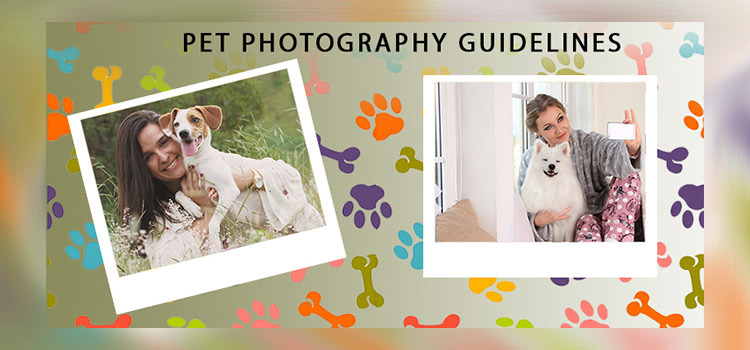 Pet Photography Guidelines
