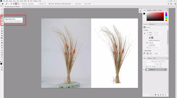 choose image and open the Magic Wand Tool from Toolbar